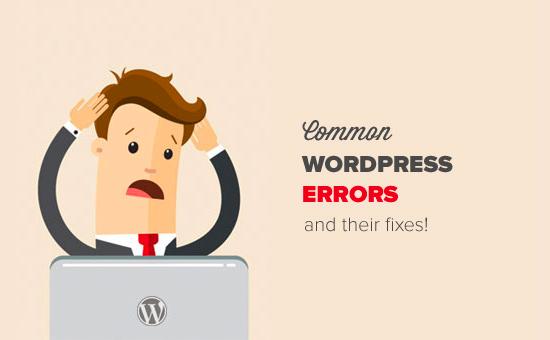 wordpress erro